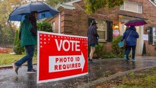 110319 voting generic election generic