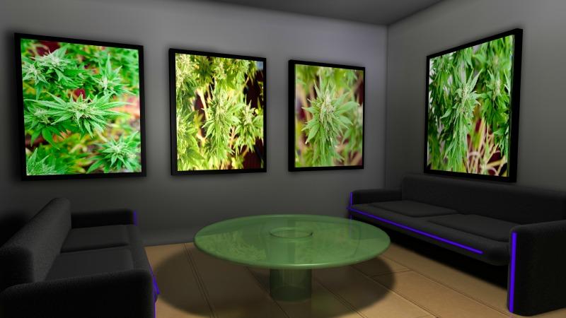 TLMD-Marihuana-recreativa-en-massachusetts-foto-holanda-shutterstock-70321180