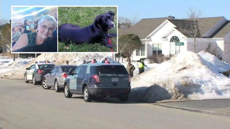 TLMD-Plymouth-mujer-y-perro-mueren-tras-ser-atropellados-----