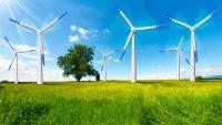 Top 100: las ciudades más ecológicas de los Estados Unidos para este 2021