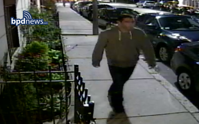 fenway sexual assault suspect
