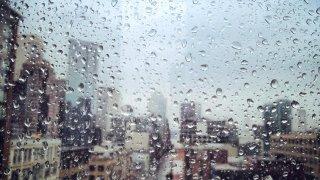 generic rain