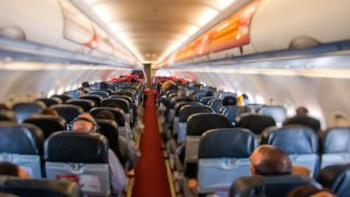 raton a bordo retrasa vuelo intercontinental