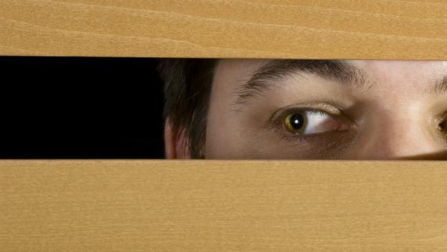 tlmd_peeping_tom_miron_privacidad_shutterstock_94042390