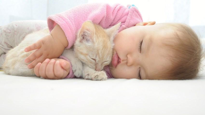tlmd_sleeping_baby_shutterstock_221307421