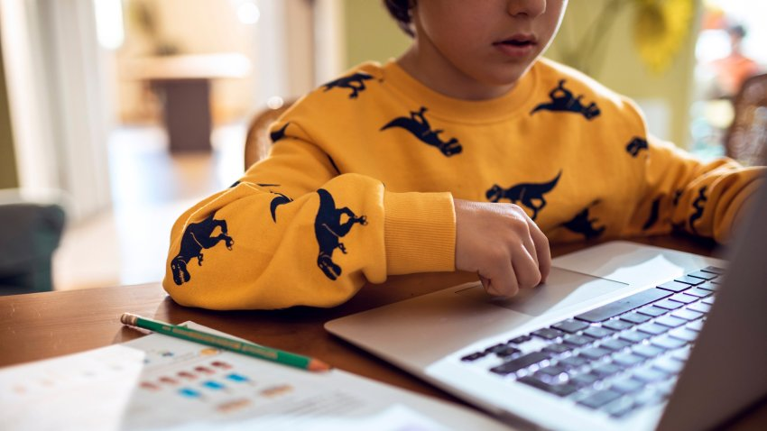 Child online learning; child at laptop