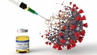 vacunas contra el coronavirus