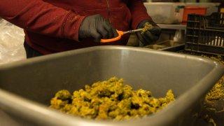 Emiten 13 licencias para dispensarios de marihuana en ocho condados rurales de Arizona