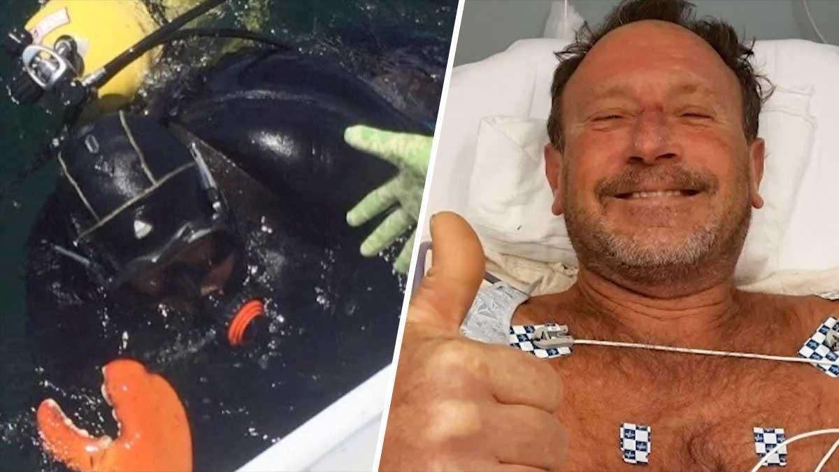 """Buzo sobrevive después de ser """"tragado por una ballena jorobada"""""""