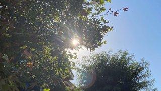 The sun shines.
