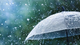 rain umbrella generic
