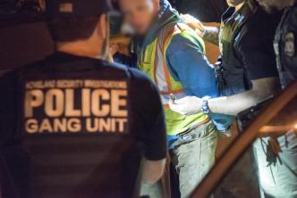 2 arrestados como parte de operativo contra MS-13
